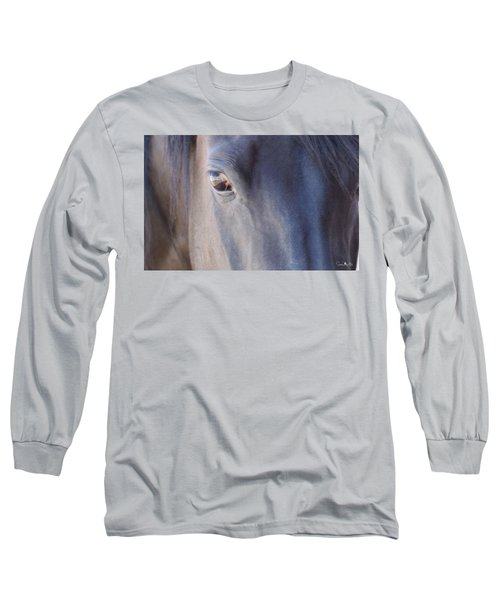 Fenced Foal Long Sleeve T-Shirt
