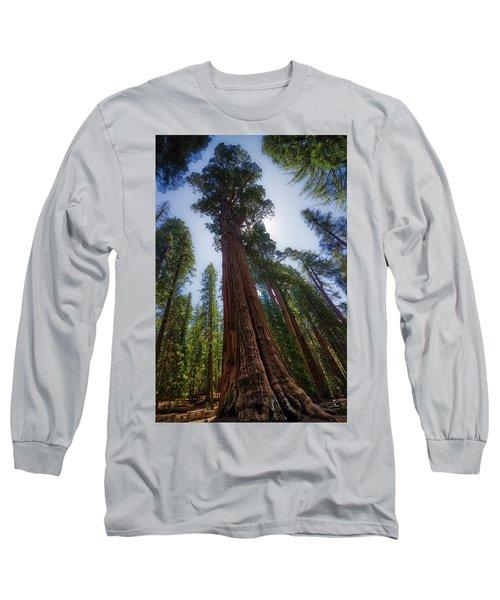 Giant Sequoia Tree Long Sleeve T-Shirt