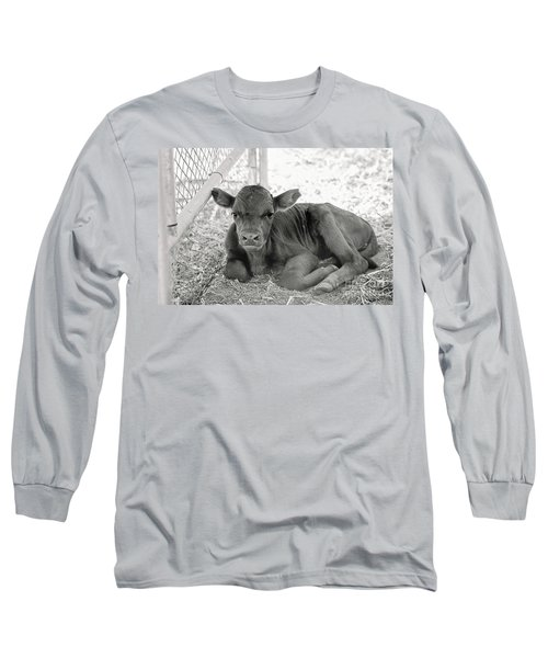 Grumpy Cow Long Sleeve T-Shirt
