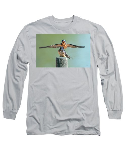 Hey, Babe, Let's Rock N Roll.  Barn Swallows Long Sleeve T-Shirt