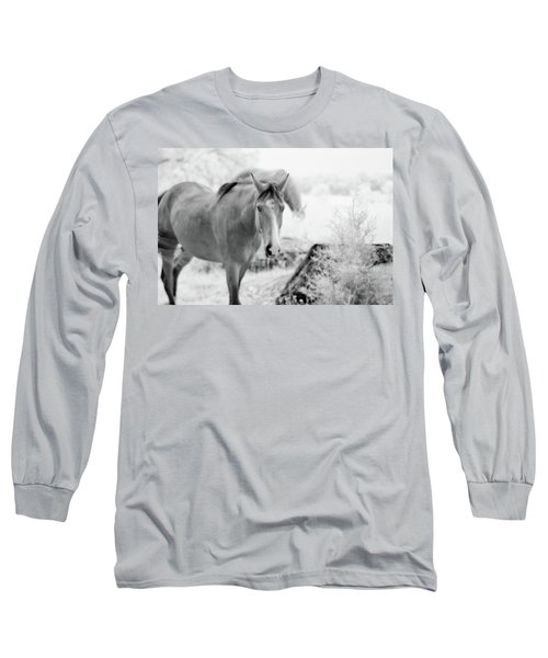 Horse In Infrared Long Sleeve T-Shirt