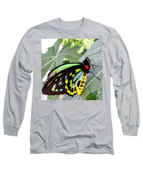 Insect Kaleidescope Long Sleeve T-Shirt