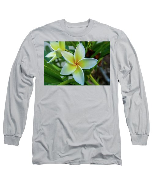 Plumeria In Bloom Long Sleeve T-Shirt