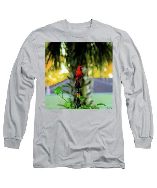 Proud Male Cardinal Long Sleeve T-Shirt