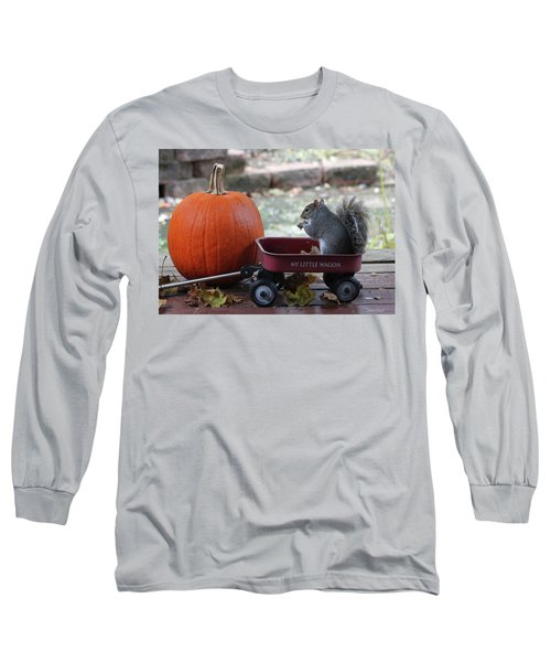 Ready To Ride My Little Red Wagon Long Sleeve T-Shirt