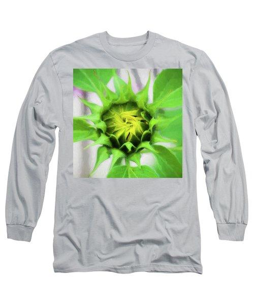 Sunflowers  Helianthus 030 Long Sleeve T-Shirt