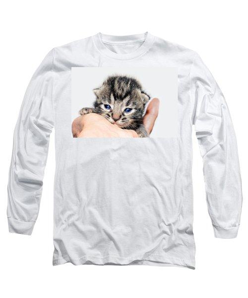 Kitten In A Hand Long Sleeve T-Shirt