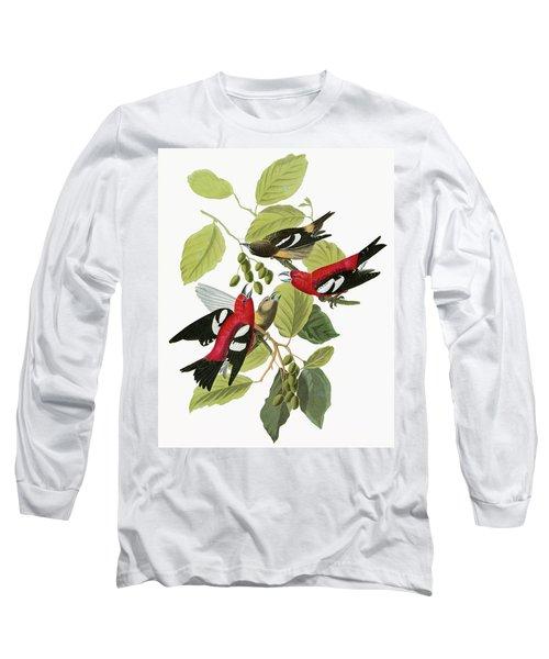 Audubon Crossbill Long Sleeve T-Shirt