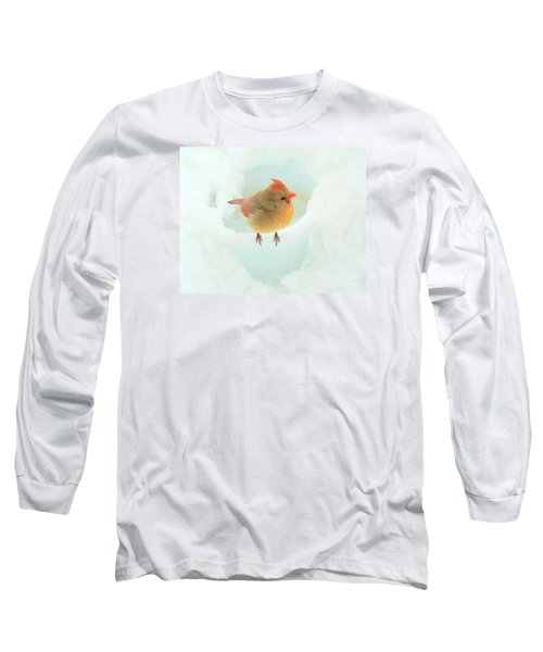 Baby Female Cardinal Long Sleeve T-Shirt by Janette Boyd