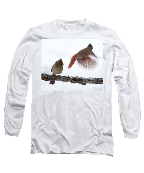 Fly Away Long Sleeve T-Shirt by Bill Stephens