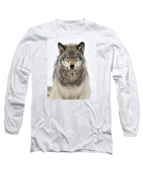 Timber Wolf Portrait Long Sleeve T-Shirt by Tony Beck