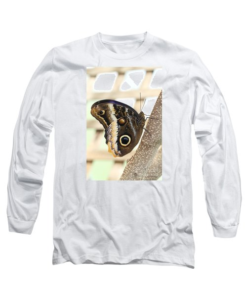 Yellow-edged Giant Owl Butterfly #4 Long Sleeve T-Shirt by Judy Whitton