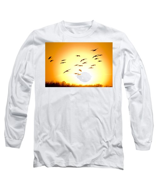 Migration Long Sleeve T-Shirt