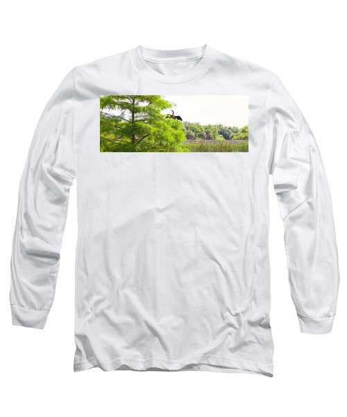 Anhinga Anhinga Anhinga On A Tree Long Sleeve T-Shirt