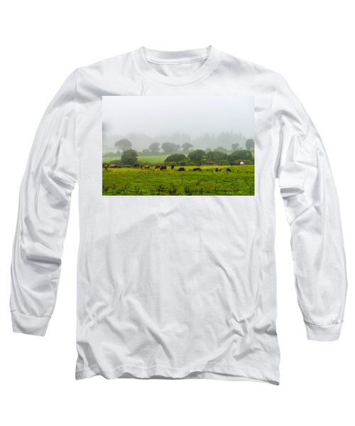 Cows At Rest Long Sleeve T-Shirt