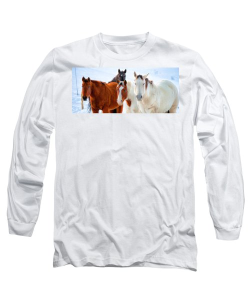 4 Horses Long Sleeve T-Shirt