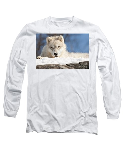 Arctic Wolf Pup Long Sleeve T-Shirt