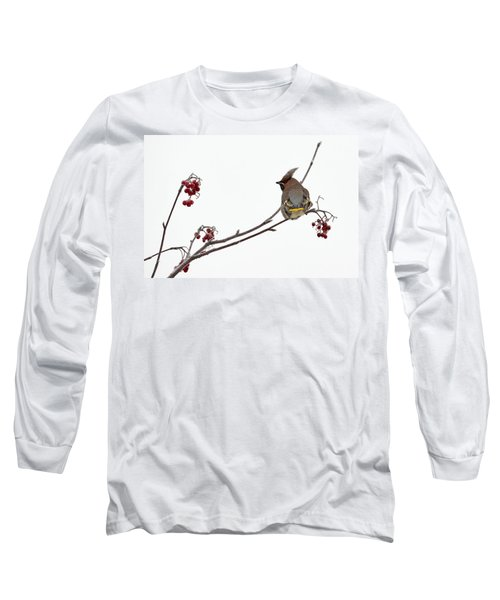 Bohemian Waxwings Eating Rowan Berries Long Sleeve T-Shirt