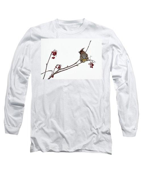Bohemian Waxwings Eating Rowan Berries Long Sleeve T-Shirt by Jouko Lehto