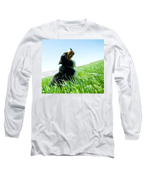 A Cute Dog On The Field Long Sleeve T-Shirt