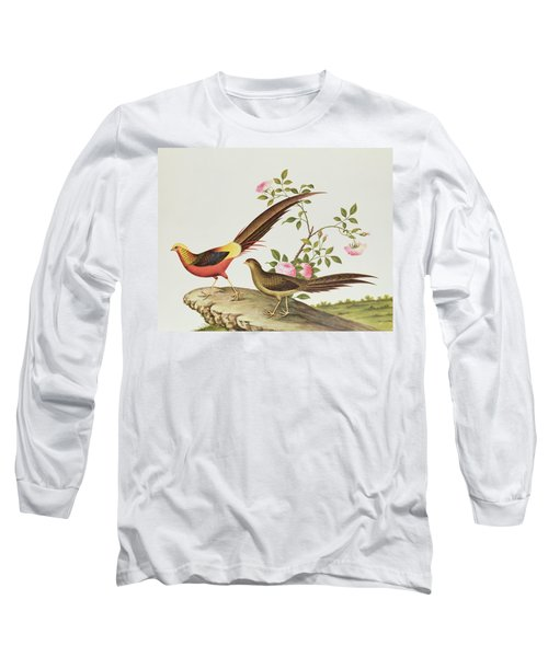A Golden Pheasant Long Sleeve T-Shirt by Chinese School