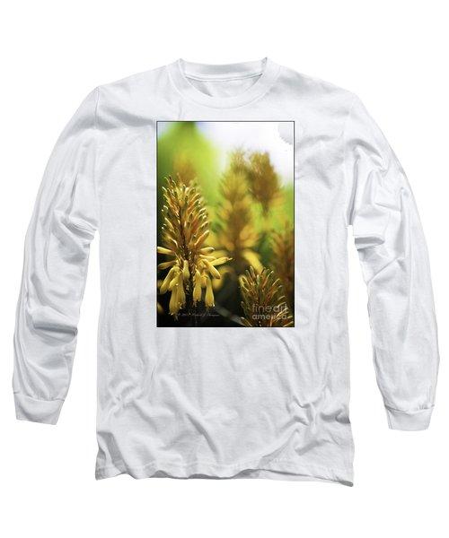 Aloe 'kujo' Plant Long Sleeve T-Shirt