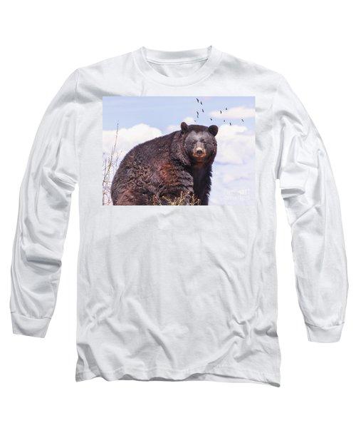 American Black Bear Long Sleeve T-Shirt by Janice Rae Pariza