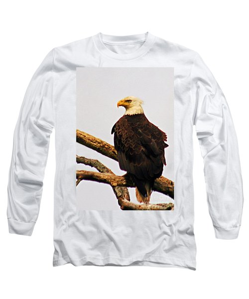 An Eagle's Perch Long Sleeve T-Shirt by Polly Peacock