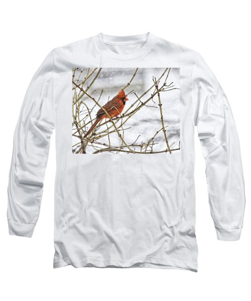 Another Snowy Day Long Sleeve T-Shirt