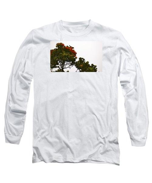 Apapane Atop An Orange Ohia Lehua Tree  Long Sleeve T-Shirt by Lehua Pekelo-Stearns