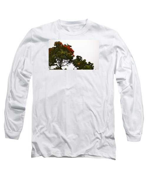 Apapane Atop An Orange Ohia Lehua Tree  Long Sleeve T-Shirt
