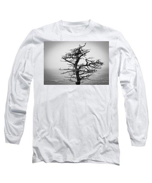 Bare Cypress Long Sleeve T-Shirt by Melinda Ledsome