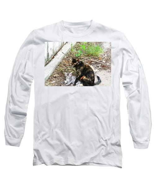 Barn Cats Long Sleeve T-Shirt by PainterArtist FIN