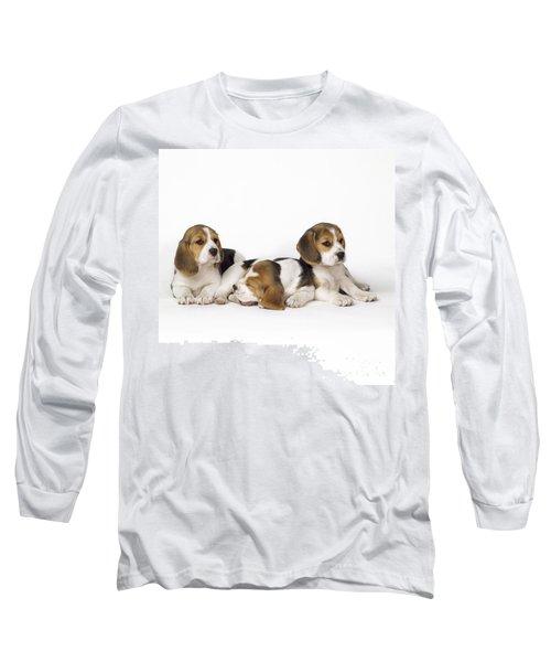Beagle Puppies, Row Of Three, Second Long Sleeve T-Shirt