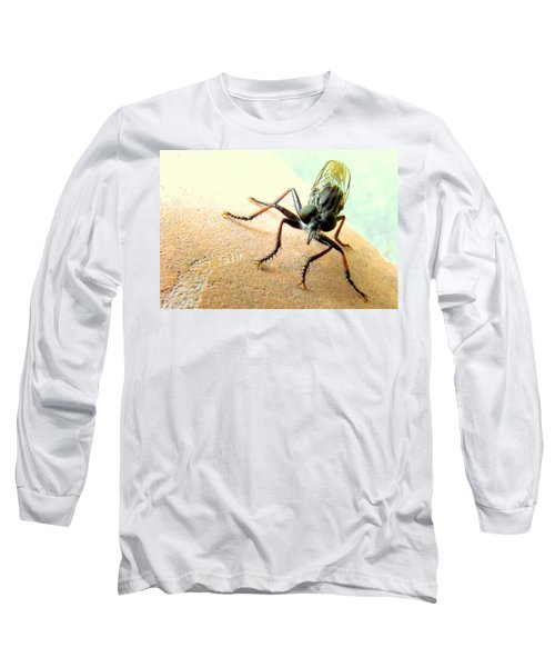 Bearded Robber Fly Long Sleeve T-Shirt