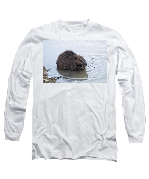 Beaver Chewing On Twig Long Sleeve T-Shirt by Chris Flees