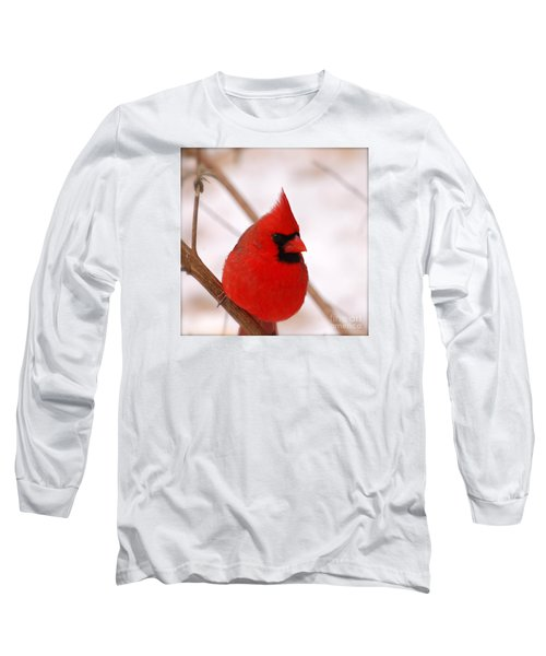 Long Sleeve T-Shirt featuring the photograph Big Red  Cardinal Bird In Snow by Peggy Franz