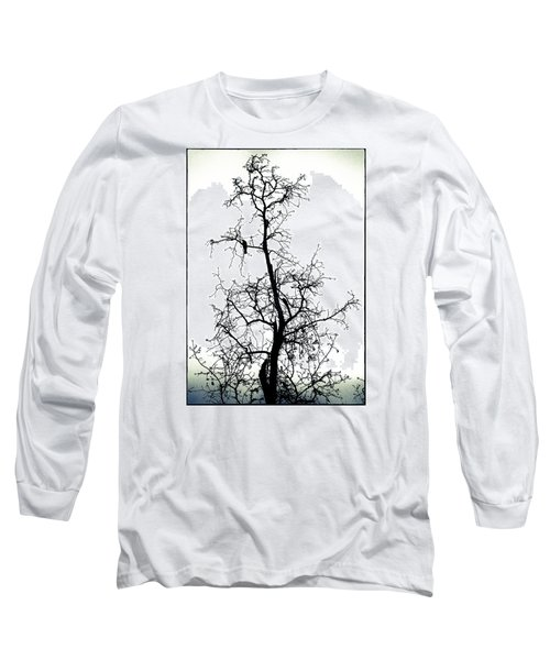 Bird In The Branches Long Sleeve T-Shirt