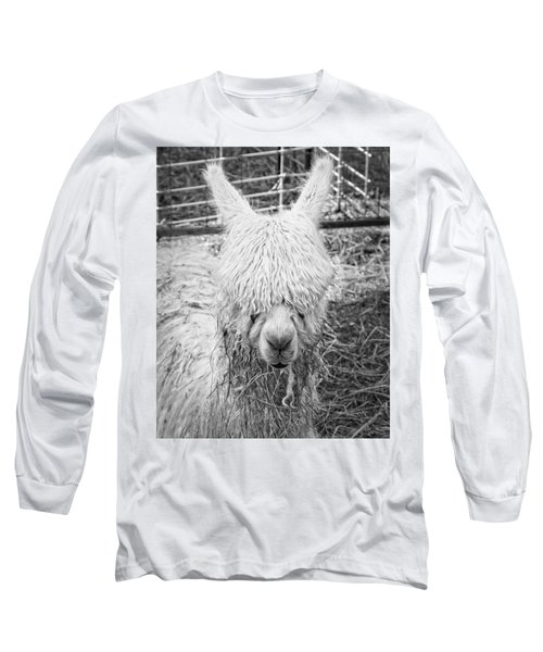 Black And White Alpaca Photograph Long Sleeve T-Shirt by Keith Webber Jr