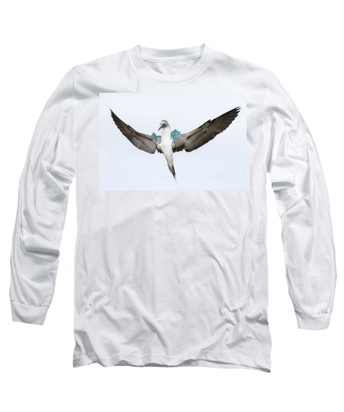 Blue-footed Booby Landing Galapagos Long Sleeve T-Shirt by Tui De Roy