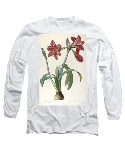 Brazilian Amaryllis Long Sleeve T-Shirt