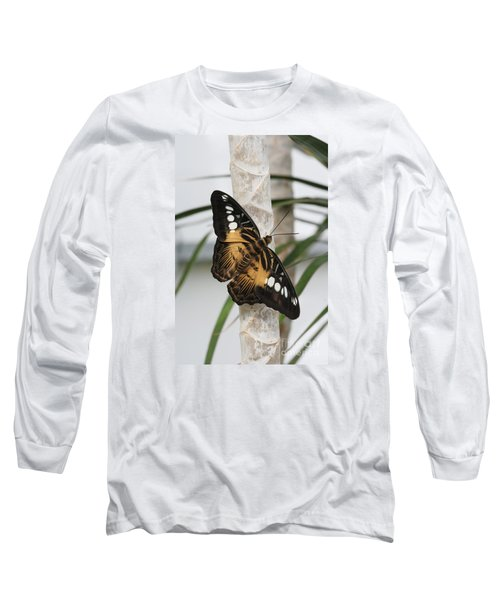 Brown Clipper Butterfly #2 Long Sleeve T-Shirt by Judy Whitton