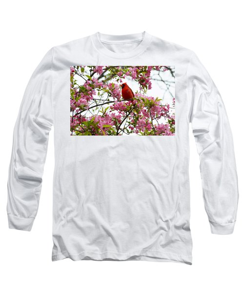 Cardinally Beautiful Long Sleeve T-Shirt by Sonali Gangane