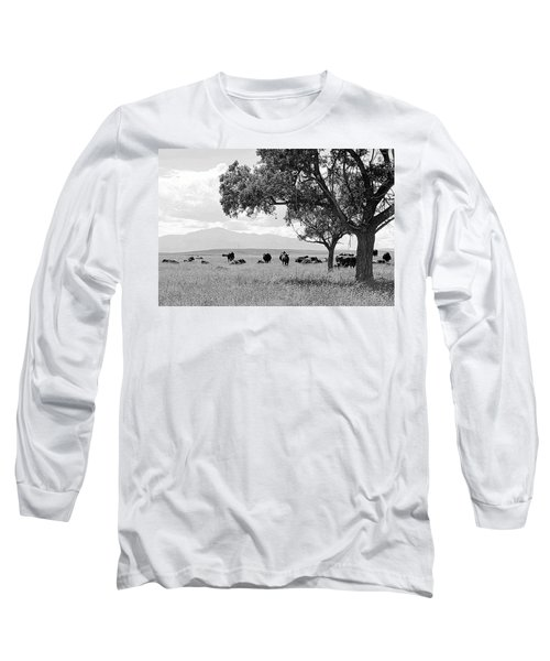 Cattle Ranch In Summer Long Sleeve T-Shirt by Clarice  Lakota