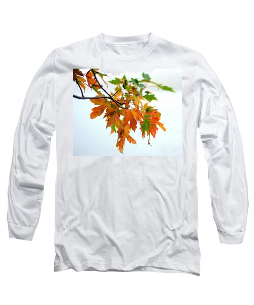 Changing Seasons Long Sleeve T-Shirt
