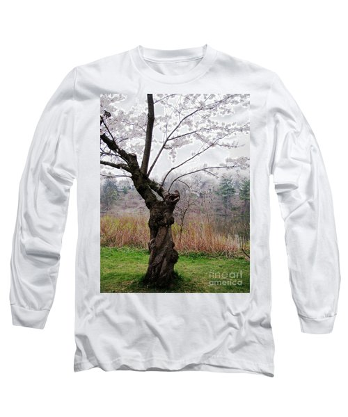 Cherry Blossom Time Long Sleeve T-Shirt by Nina Silver