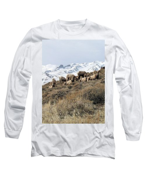 Chimney Rock Rams Long Sleeve T-Shirt
