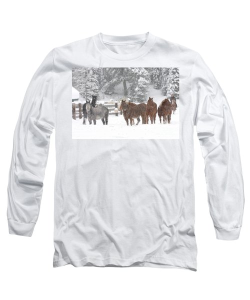 Cold Ponnies Long Sleeve T-Shirt