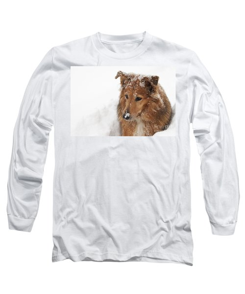 Collie In The Snow Long Sleeve T-Shirt