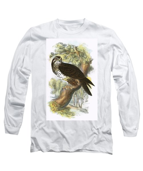 Common Buzzard Long Sleeve T-Shirt by English School